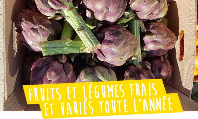 des legumes frais et varies disponibles a la vente au magasin domaine ecoline