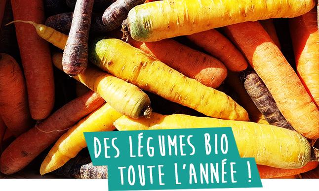 libre cueillette des legumes bio toute l annee au domaine d ecoline